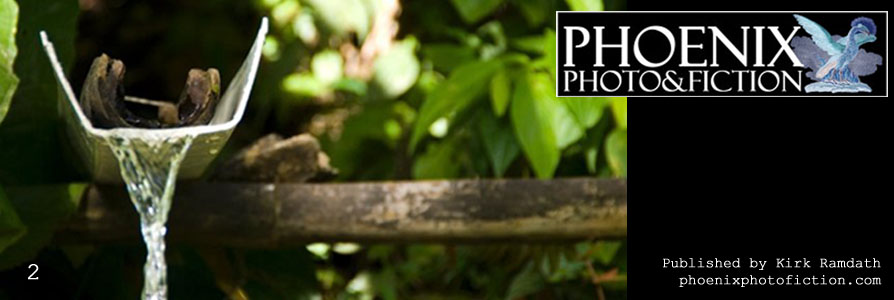 Phoenix Photo&Fiction cover banner. Click to go to the home page.