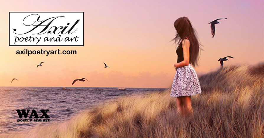 Header image - female presenting person overlooking the ocean from a grassy hill while birds fly around - Axil Poetry and Art - axilpoetryart.com