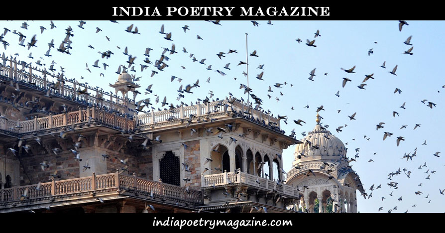 Image shows a flock of birds flying near a building - India Poetry Magazine. www.indiapoetrymagazine.com.